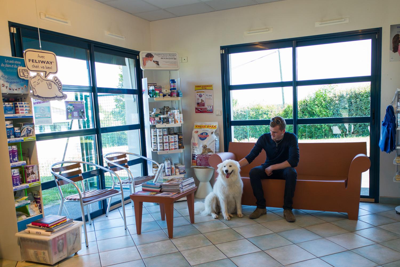 Salle d'attente de la clinique vétérinaire